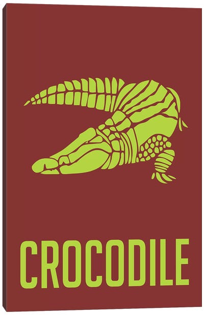 Crocodile III Canvas Art Print