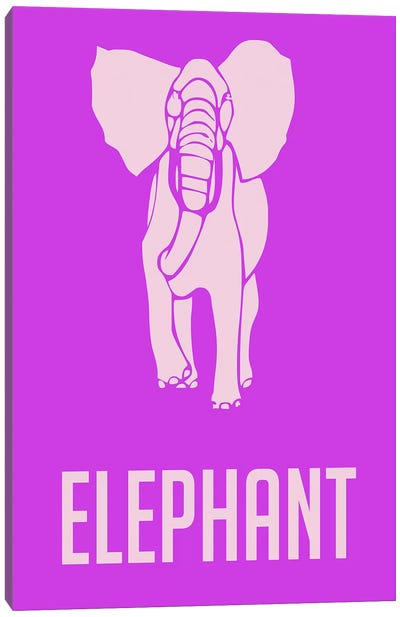 Elephant II Canvas Print #NAX433
