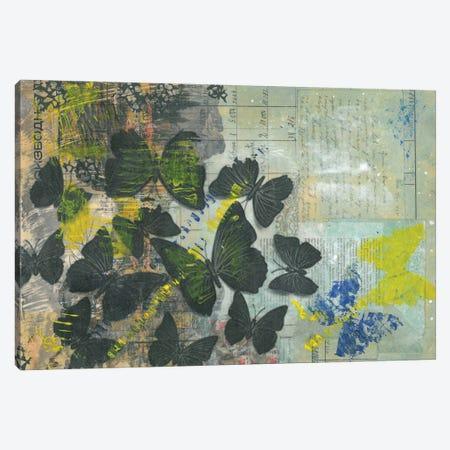 Butterflies Canvas Print #NBD4} by Nora Bland Art Print