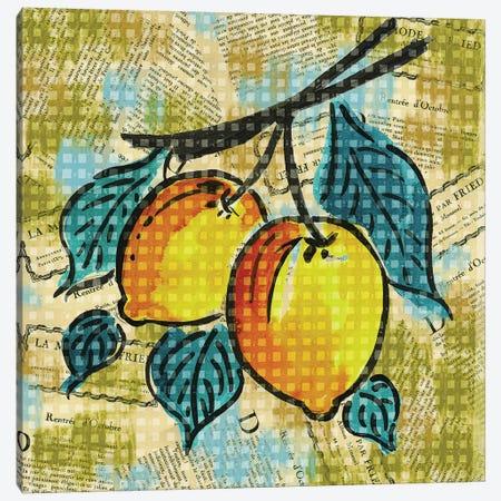 Fashion Fruit II Canvas Print #NBI15} by Nicholas Biscardi Canvas Wall Art