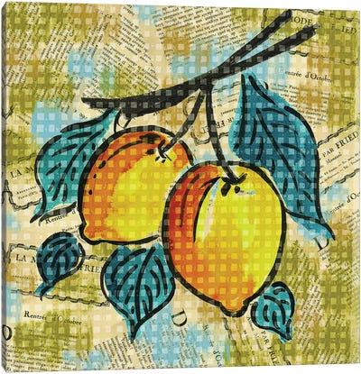 Fashion Fruit II Canvas Art Print