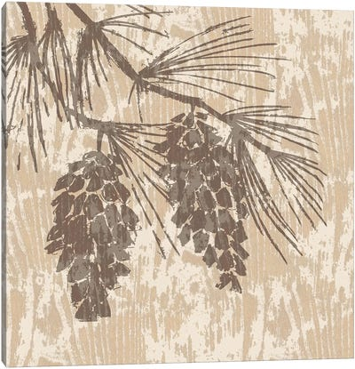 Spirit Lodge II Canvas Art Print