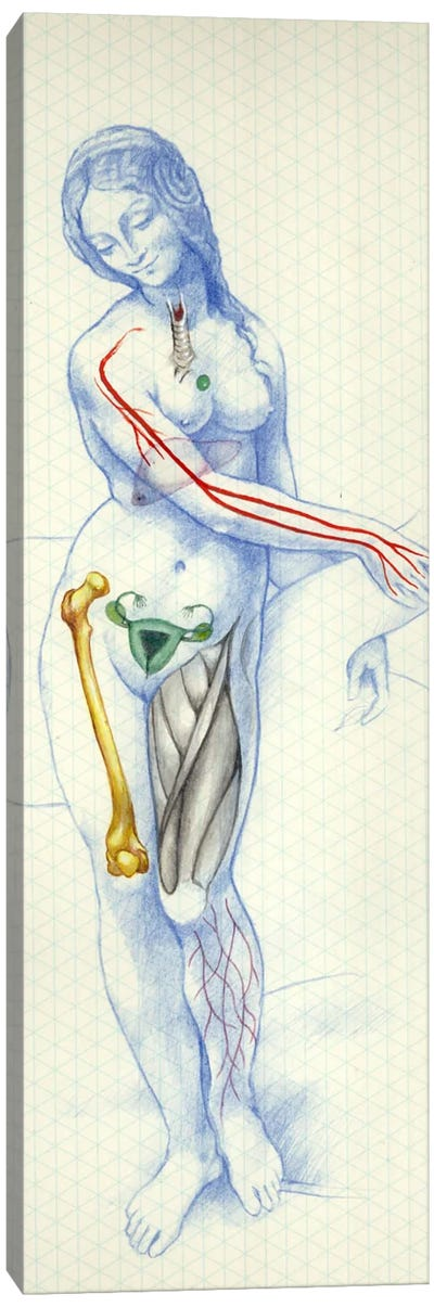 Blue Skeletal Canvas Art Print