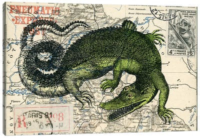 Croc Map Canvas Art Print