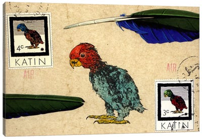 Katin Parrot Canvas Art Print