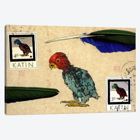 Katin Parrot Canvas Print #NBK33} by Nick Bantock Art Print