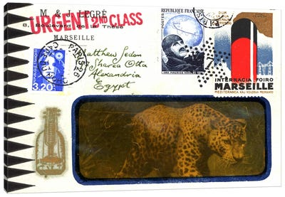 Marseille Leopard Canvas Art Print