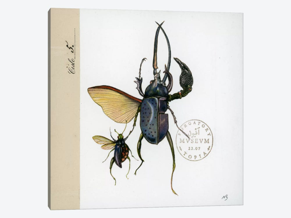 Morph Insects by Nick Bantock 1-piece Canvas Wall Art