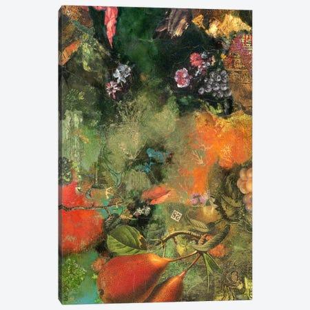Oregon Pears Canvas Print #NBK46} by Nick Bantock Canvas Art Print