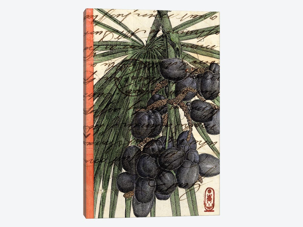 Plums by Nick Bantock 1-piece Canvas Art