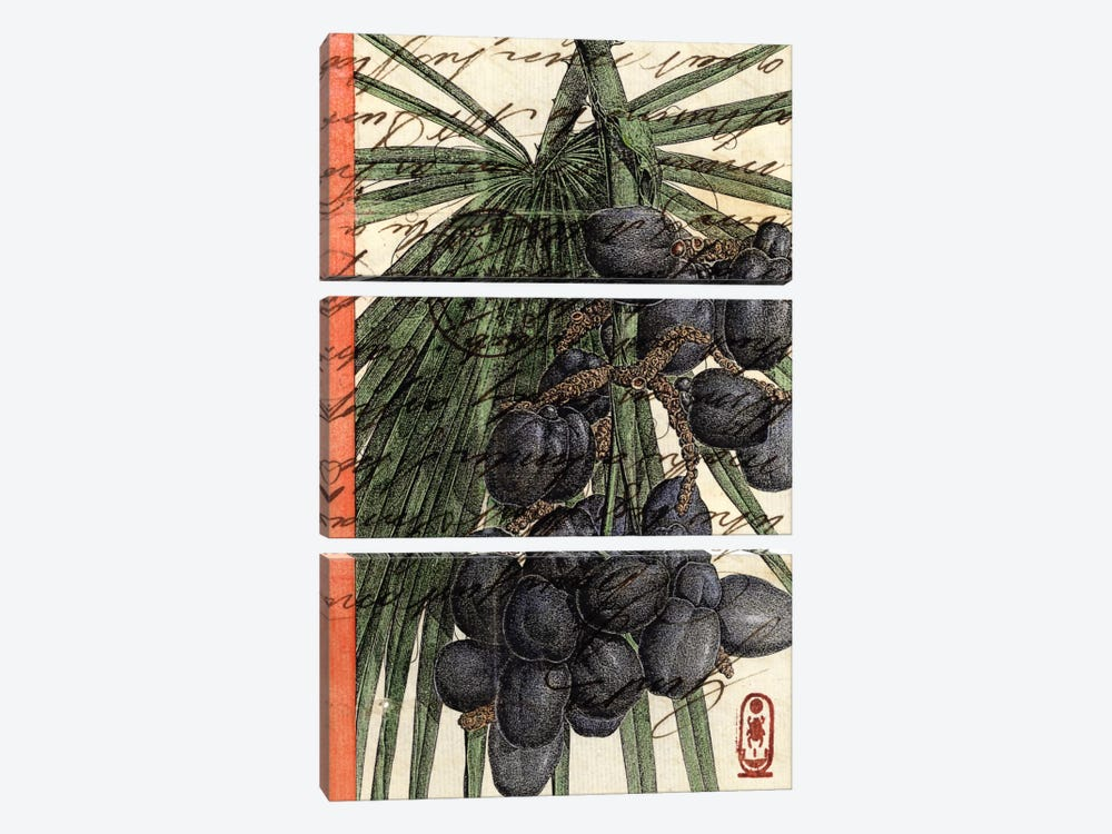 Plums by Nick Bantock 3-piece Canvas Artwork