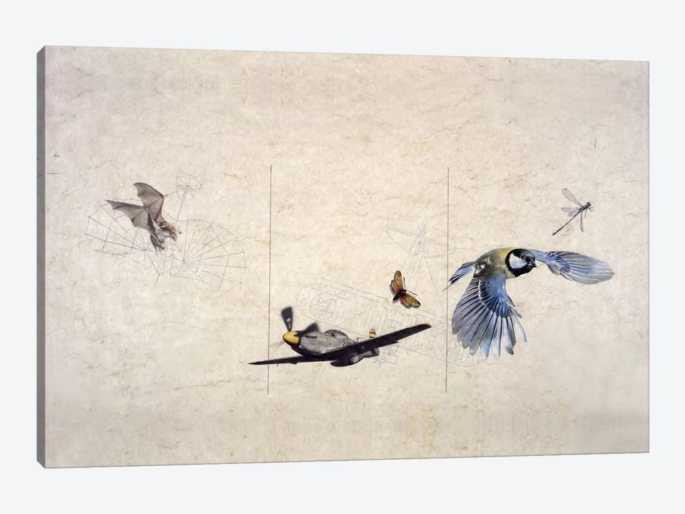 Wings by Nick Bantock 1-piece Canvas Wall Art