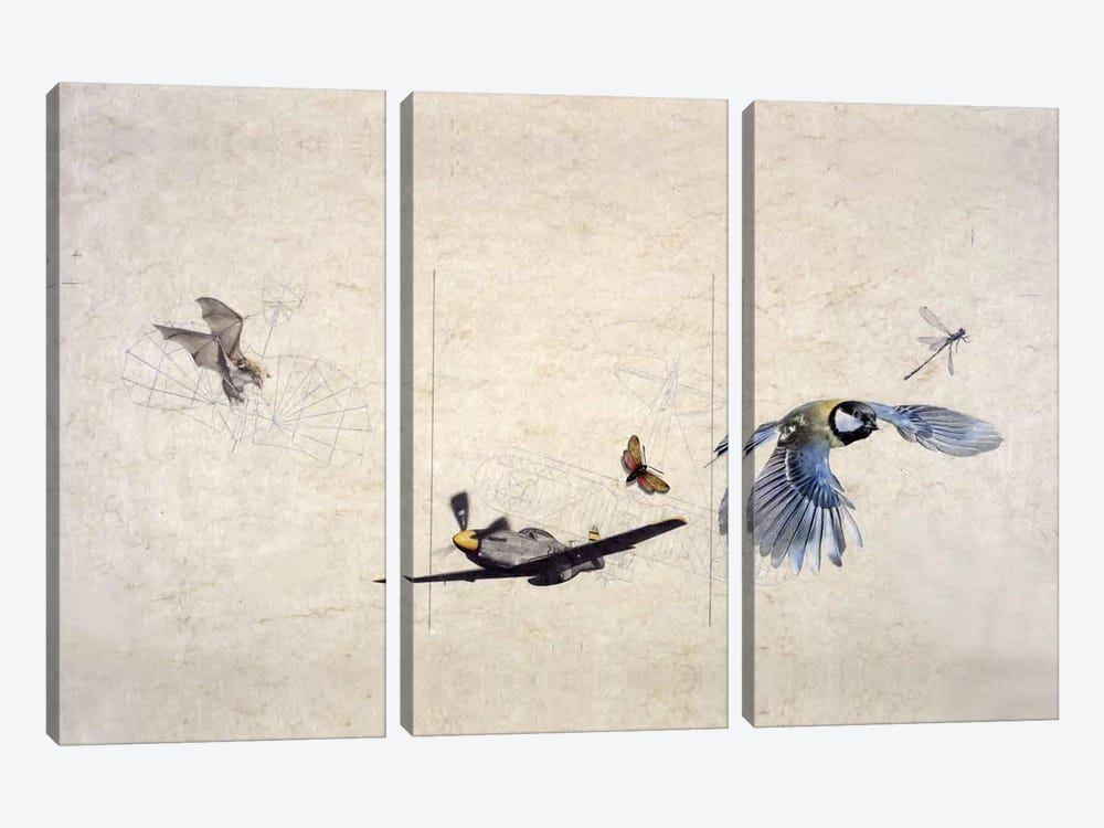 Wings by Nick Bantock 3-piece Canvas Artwork