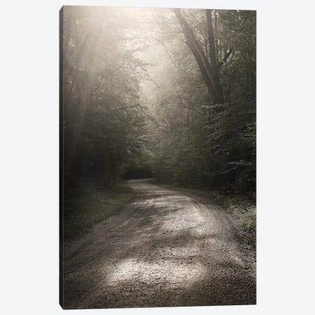 Back Country Road Canvas Print #NBP1} by Nicholas Bell Photography Art Print