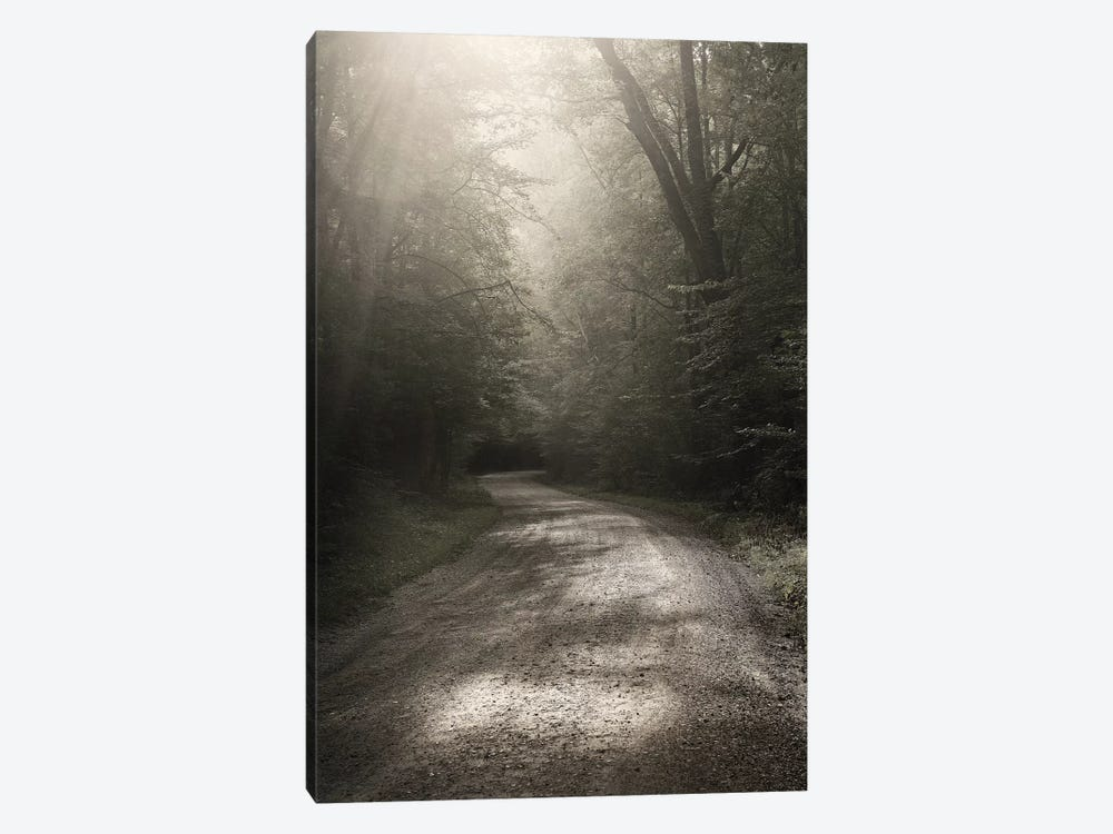 Back Country Road by Nicholas Bell Photography 1-piece Canvas Art