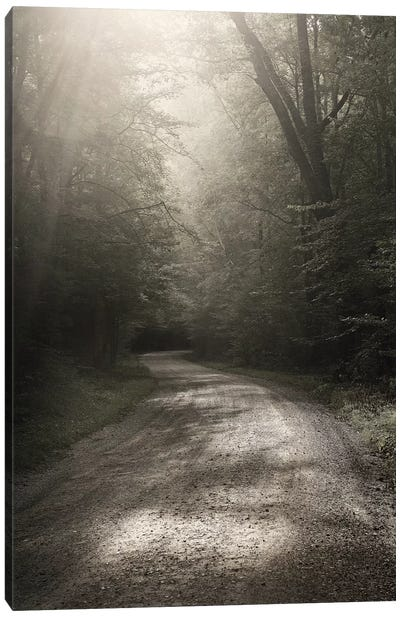 Back Country Road Canvas Art Print