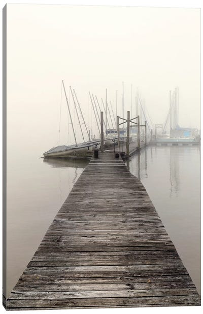 Harbor Fog Canvas Art Print