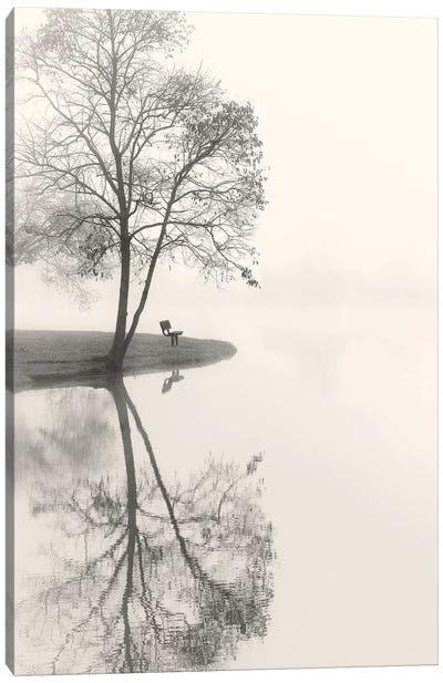 Tranquil Morning Canvas Art Print