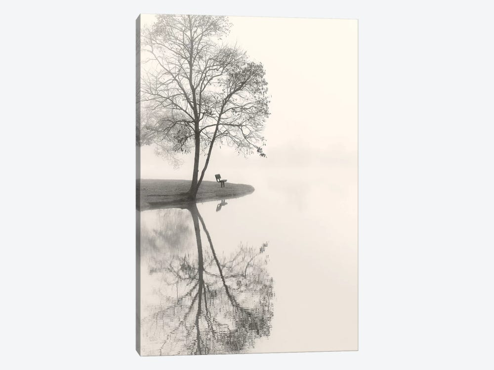 Tranquil Morning by Nicholas Bell Photography 1-piece Canvas Artwork