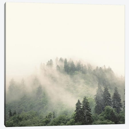 Elevation No. 2, Smoky Mountains Canvas Print #NBP6} by Nicholas Bell Photography Canvas Art