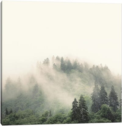 Elevation No. 2, Smoky Mountains Canvas Art Print