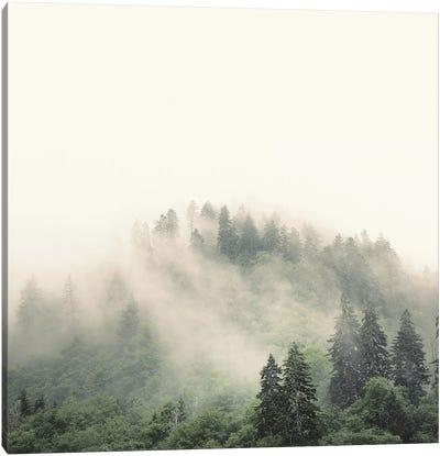 Elevation No. 2, Smoky Mountains Canvas Print #NBP6