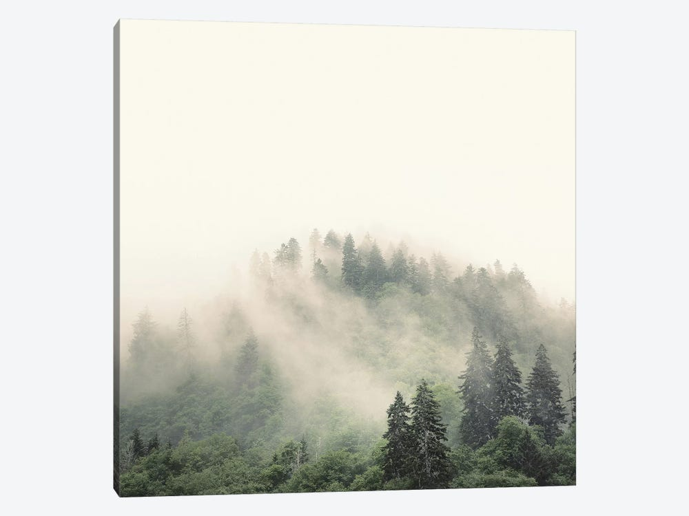 Elevation No. 2, Smoky Mountains by Nicholas Bell Photography 1-piece Canvas Print
