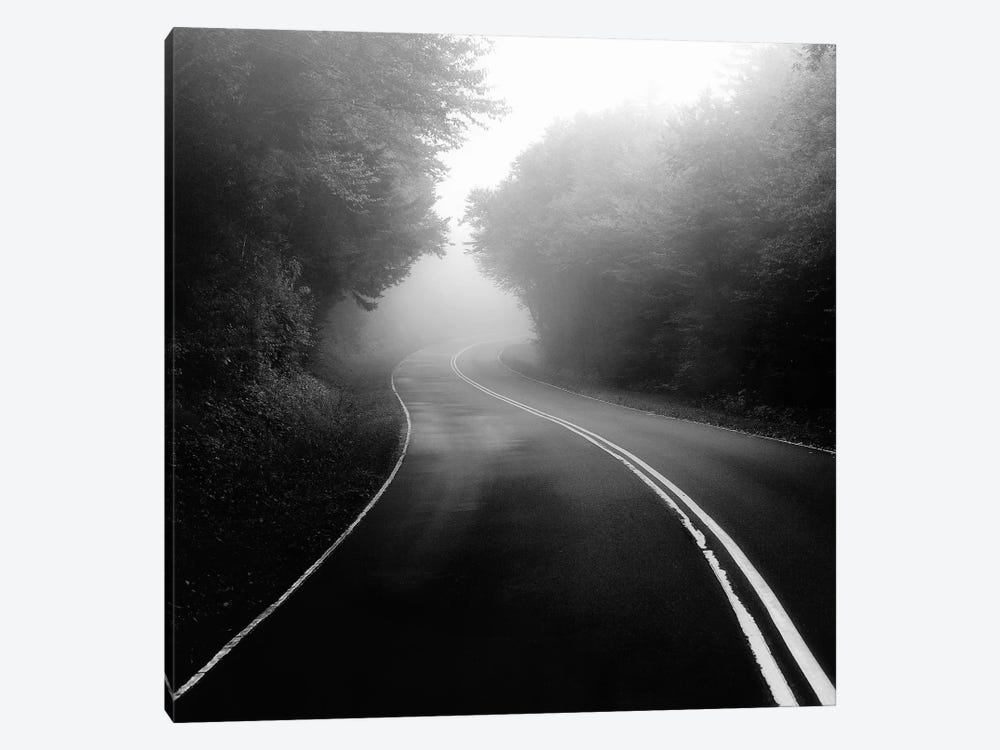 Mountain Road by Nicholas Bell Photography 1-piece Canvas Artwork