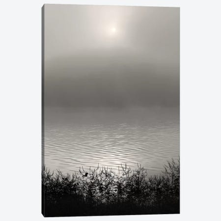 Monochrome Sunrise Canvas Print #NBP9} by Nicholas Bell Photography Canvas Art Print