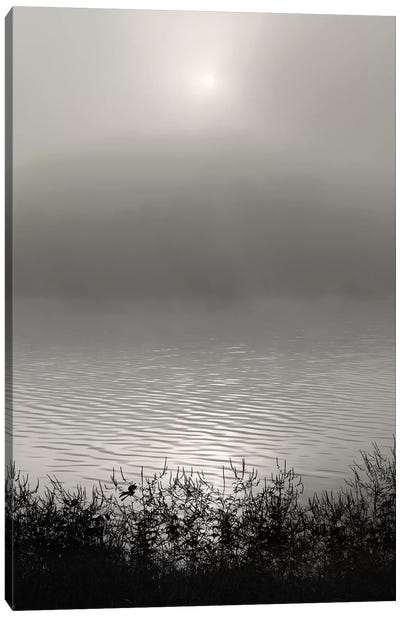 Monochrome Sunrise Canvas Art Print