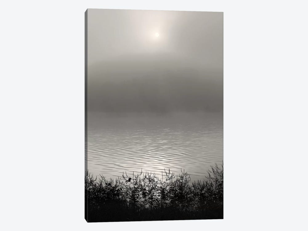 Monochrome Sunrise 1-piece Canvas Artwork