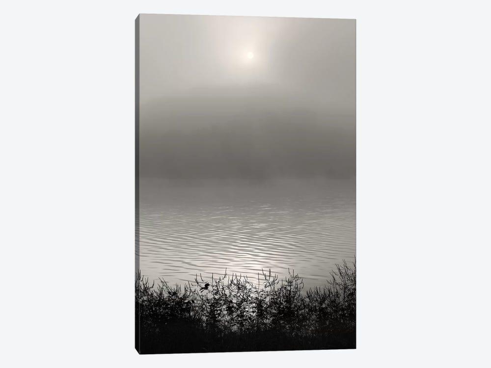 Monochrome Sunrise by Nicholas Bell Photography 1-piece Canvas Artwork