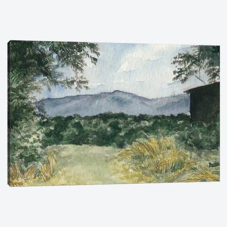 Virginia Woods III Canvas Print #NCH11} by Natasha Chabot Canvas Print