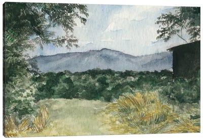 Virginia Woods III Canvas Art Print