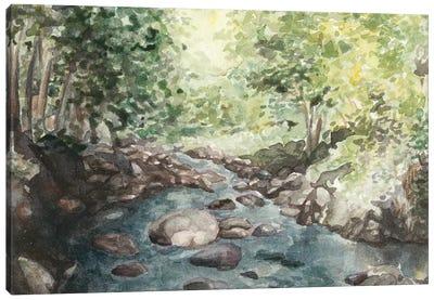 Virginia Woods IV Canvas Art Print