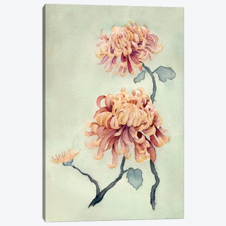 Chrysanthemum Beauty I Canvas Print #NCH1} by Natasha Chabot Art Print