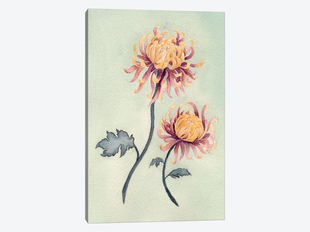 Chrysanthemum Beauty II by Natasha Chabot 1-piece Canvas Artwork