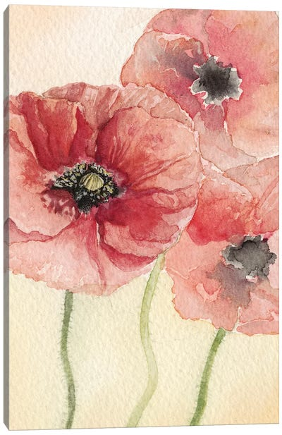 Poppy Composition I Canvas Art Print