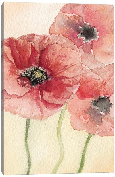 Poppy Composition I Canvas Art Print