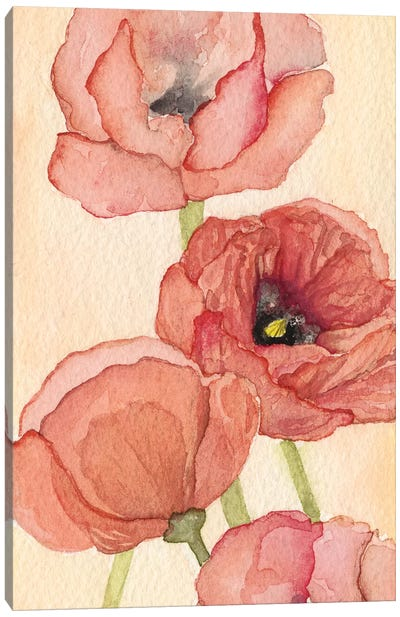 Poppy Composition II Canvas Art Print