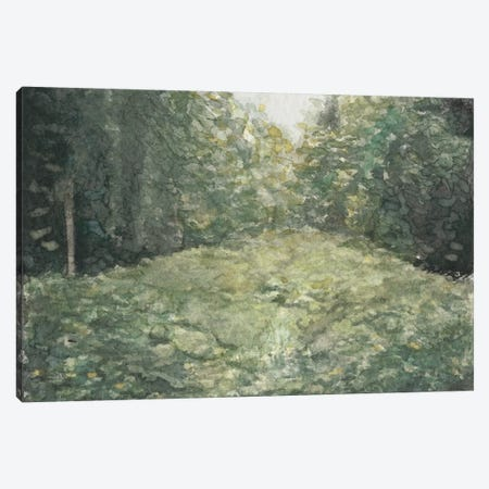 Virginia Forest I Canvas Print #NCH7} by Natasha Chabot Canvas Wall Art