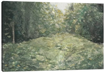 Virginia Forest I Canvas Art Print
