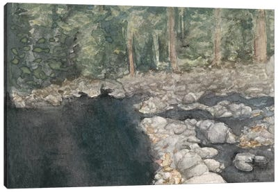 Virginia Forest II Canvas Art Print