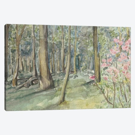 Virginia Woods I Canvas Print #NCH9} by Natasha Chabot Canvas Print