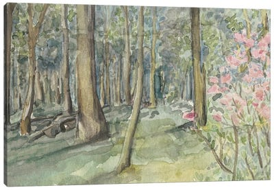 Virginia Woods I Canvas Art Print