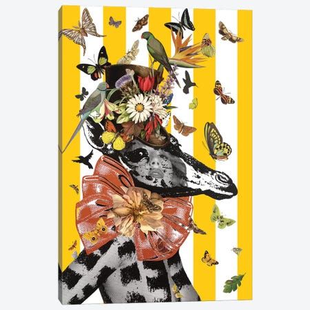 Animal Attraction Georgie I Canvas Print #NCL6} by Jana Nicole Canvas Artwork