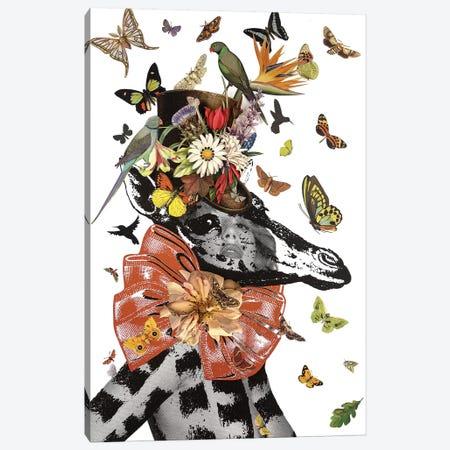 Animal Attraction Georgie II Canvas Print #NCL7} by Jana Nicole Canvas Artwork