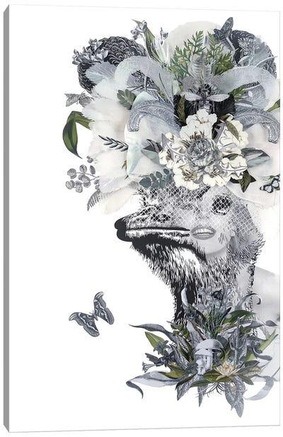 Animal Attraction Lana I Canvas Art Print