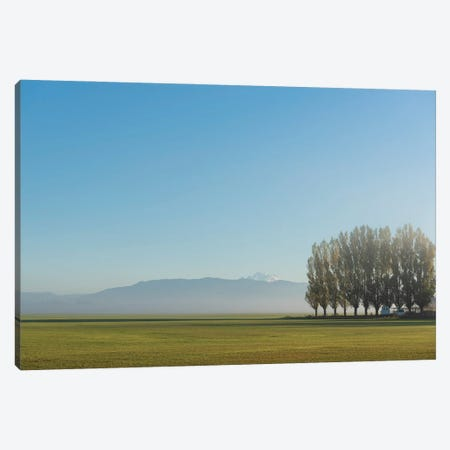 Gazing Canvas Print #NCR21} by Nancy Crowell Canvas Art