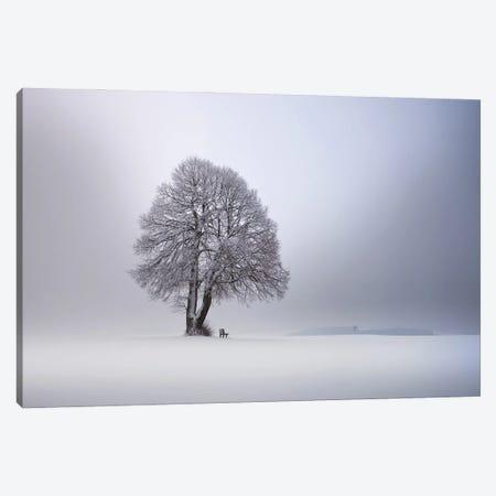 Winter Light Canvas Print #NCS11} by Nicolas Schumacher Canvas Art
